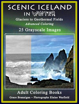 Scenic Iceland in Winter: Glaciers to Geothermal Fields: Advanced Coloring 25 Grayscale Images