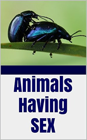 Animals Having Sex: PHOTOS of Wild Reproduction, Mating, Pairing, Procreation, Sexual intercourse ~ by Butterflies, Frogs, Cattle, Dogs, Ladybugs, Beetles, and More!!!
