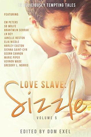 Love Slave: Sizzle (Love Slave, #5)