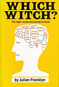 Which Witch?: The Sight, Sense, & Sounds of Words
