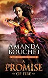 Book cover for A Promise of Fire (Kingmaker Chronicles, #1)
