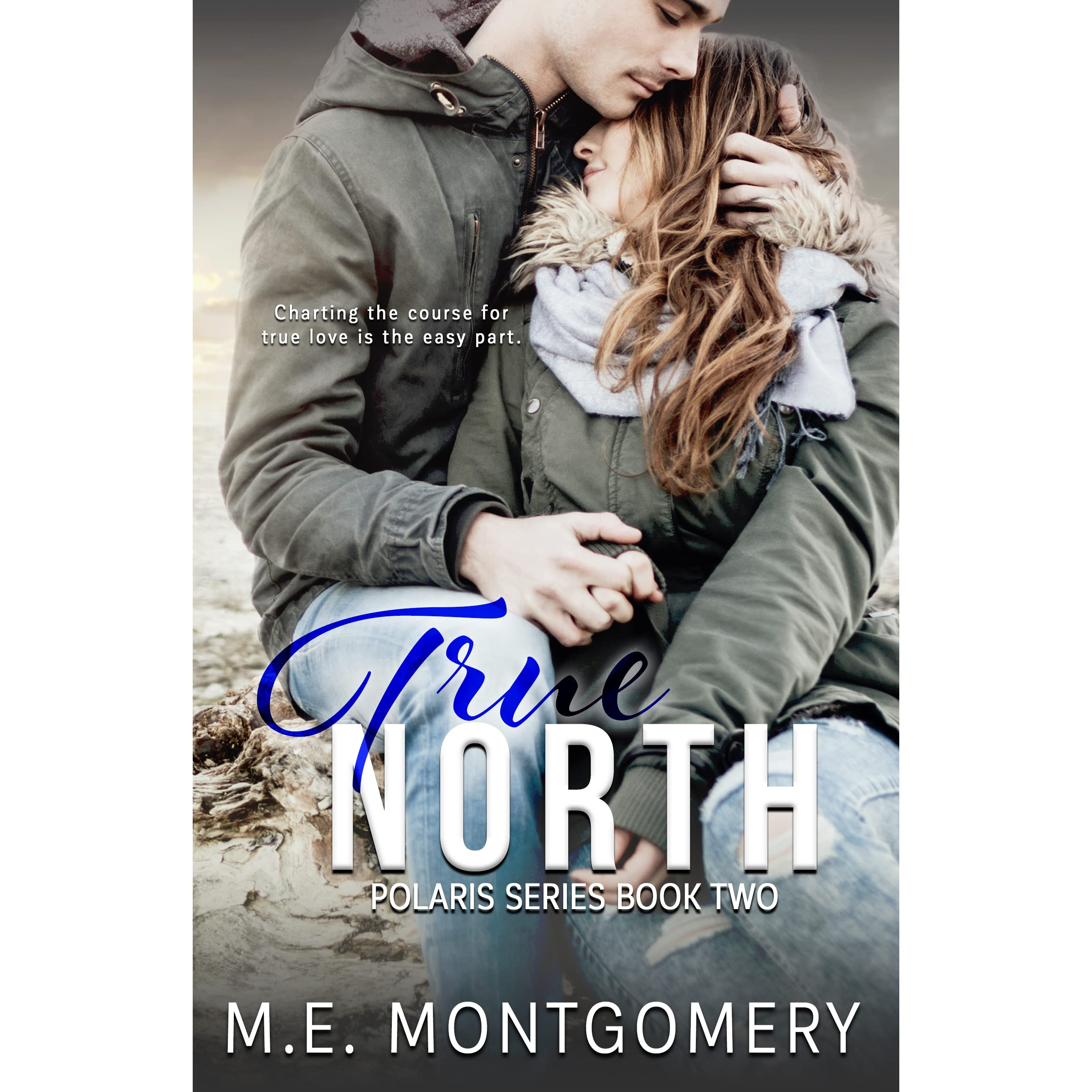 true north book review