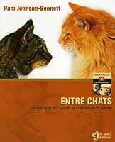Entre chats: Les hauts et les bas de la cohabitation féline