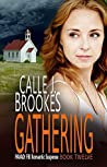 Gathering (PAVAD: FBI Romantic Suspense, #11)