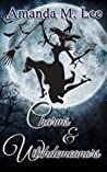 Charms & Witchdemeanors (Wicked Witches of the Midwest #8)