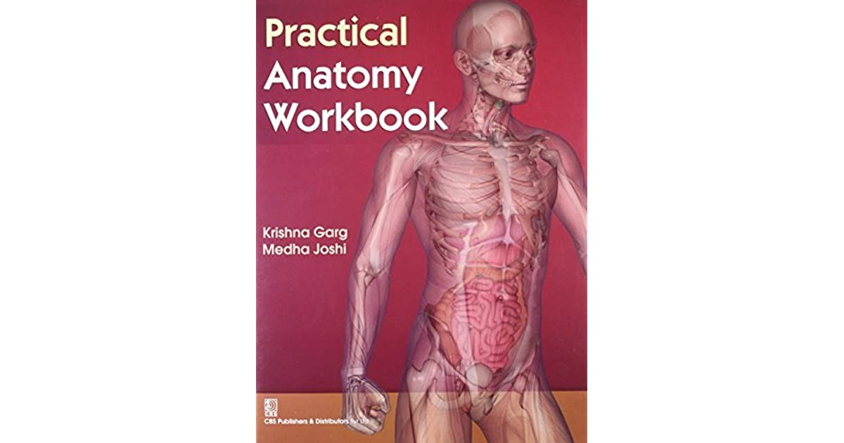 anatomy practical review