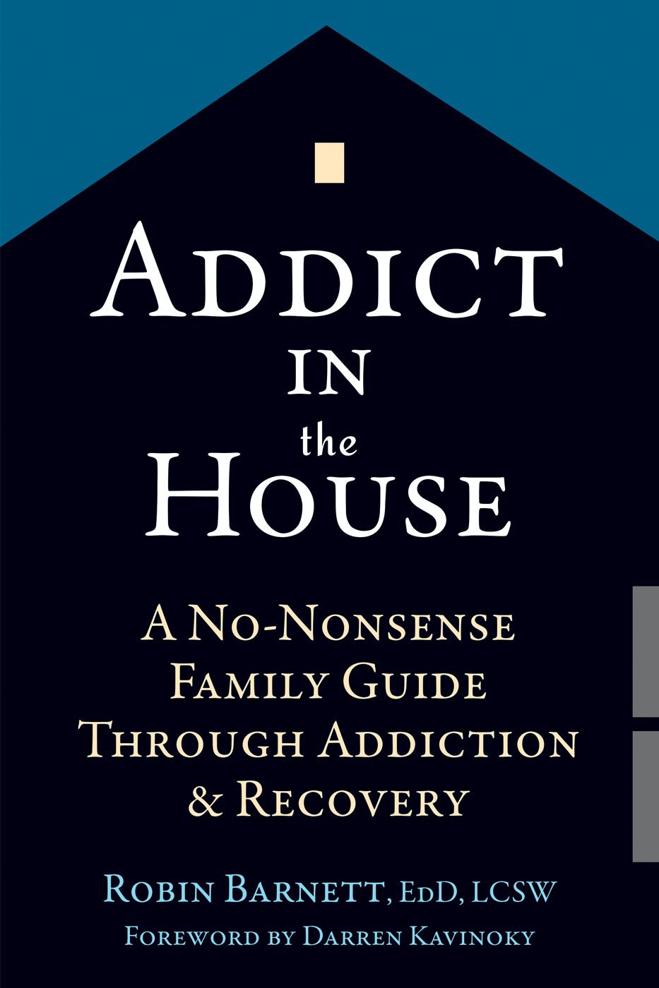 Addict in the House  A No-Nonse - Robin Barnett