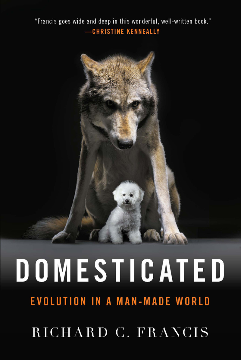 Domesticated: Evolution in a Man-Made World by Richard C
