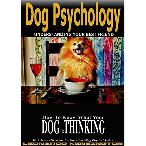 Dog Psychology: How to Know What Your Dog is Thinking
