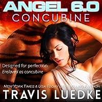 Angel 6.0: Concubine (Angel 6.0, #1)