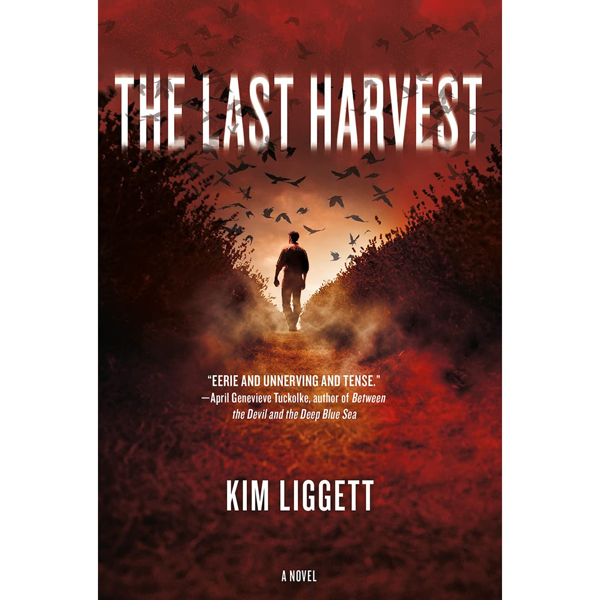The Last Harvest By Kim Liggett Parfum Mobil Karakter Line 1st Edition