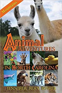 Animal Adventures in North Carolina: Mountains