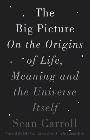 The Big Picture: On the Origins of Life, Meaning, and the Universe