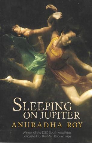Sleeping on Jupiter: A Novel Summary & Study Guide Description