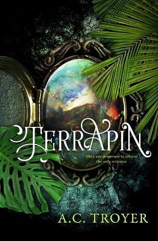 Terrapin (Nordic Airre, #1)