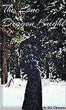 The Lone Dragon Knight (The Dragon Knight, #1)