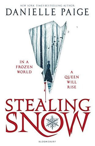 Image result for novel stealing snow