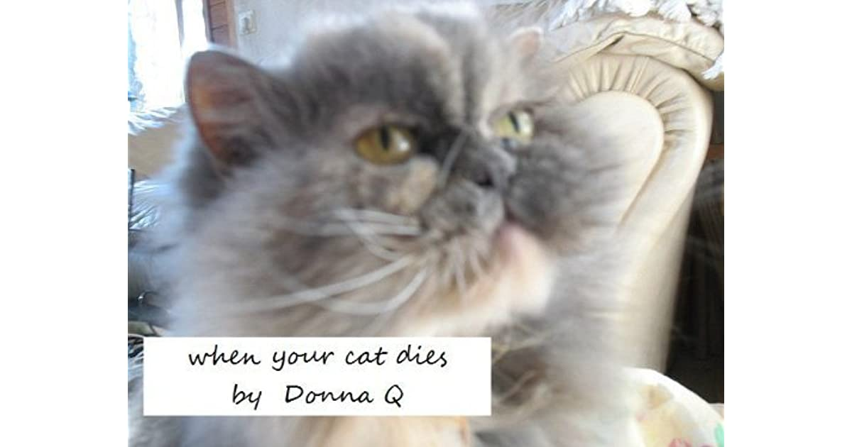 when your cat dies: new and much improved version by donna q