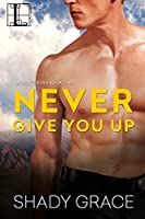 Never Give You Up (McCoy's Boys)