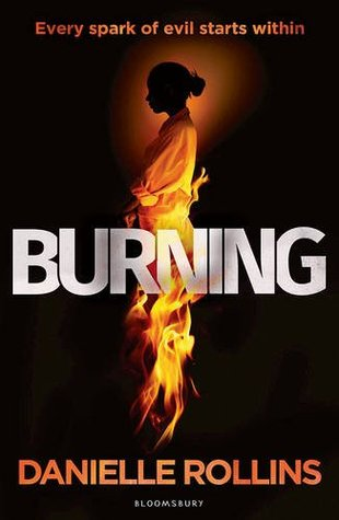 Image result for novel burning danielle