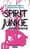 Spirit Junkie. Un camino radical para tu transformación espiritual