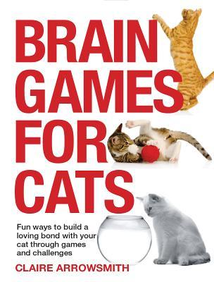 Brain Games for Cats: Fun Ways to Build a Loving Bond with