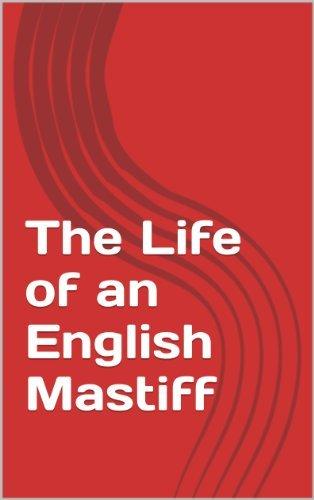 The Life of an English Mastiff