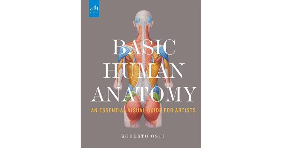 Basic Human Anatomy An Essential Visual Guide For Artists By