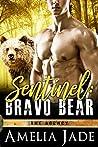 Bravo Bear (The Agency, #1)