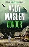 Condor (Gabriel Wolfe, #3)