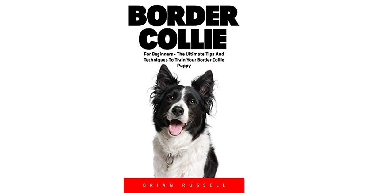 Border Collie For Beginners The Ultimate Tips And Techniques To Train Your Border Collie Puppy By Brian Russell