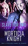 Slave for Two (Soul Match, #1)