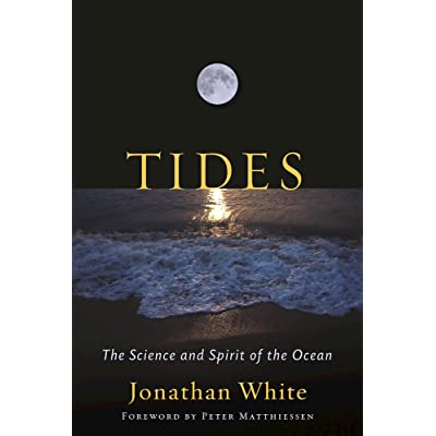 Into the Mystic: A Journey Through Time and Tides