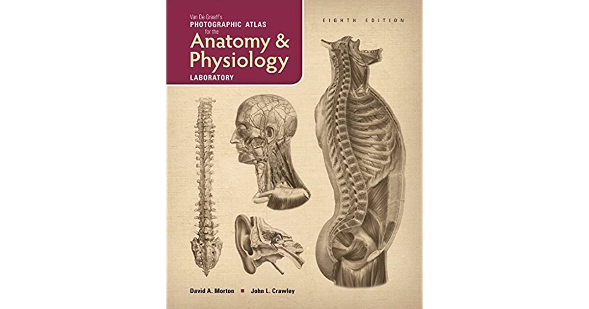 Van De Graaff\'s Photographic Atlas for the Anatomy & Physiology ...