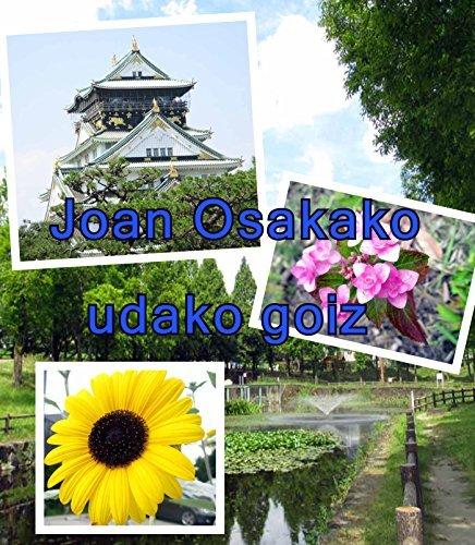 Joan Osakako udako goiz  by  Akira Sakaguchi