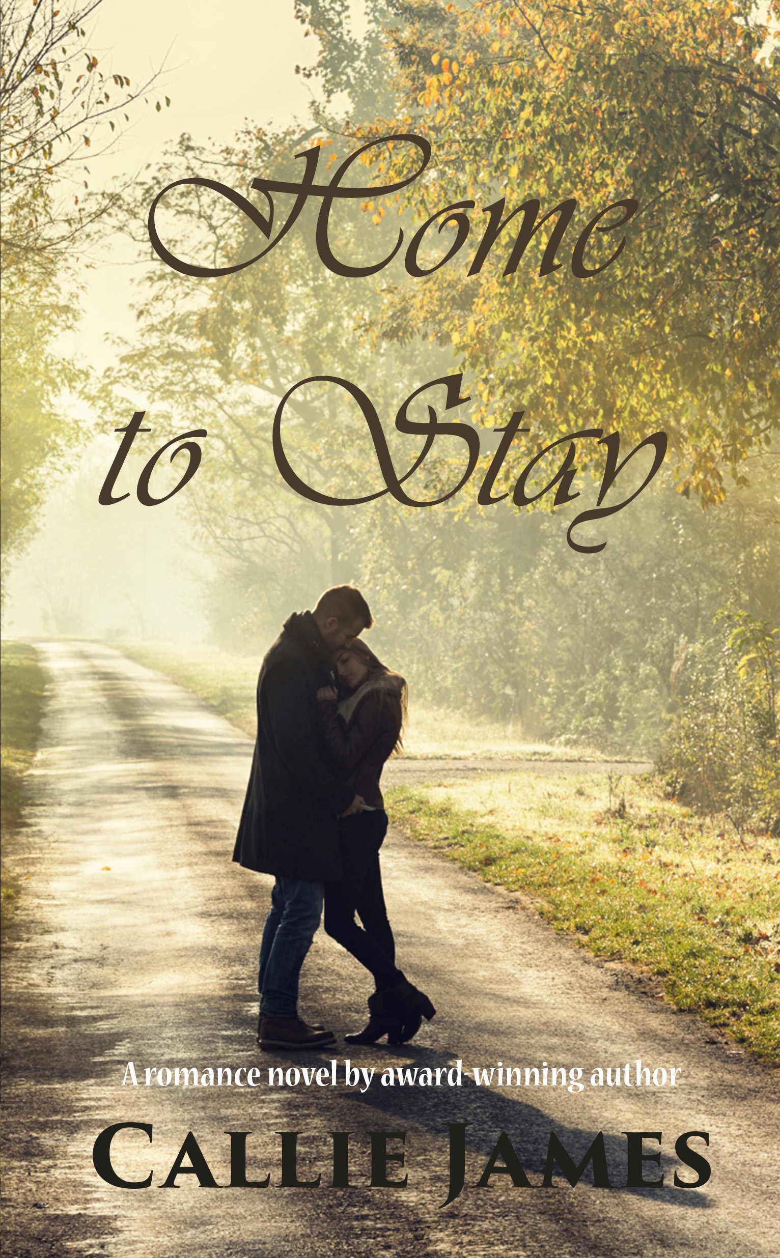 Home to Stay  by  Callie James