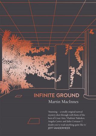 Infinite Ground by Martin MacInnes