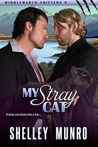 My Stray Cat (Middlemarch Shifters, #9)