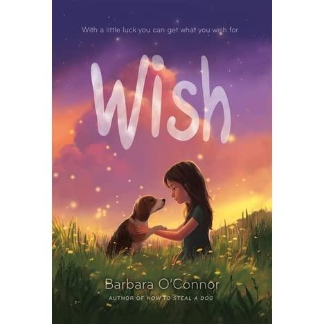 Image result for wish by barbara o'connor scholastic