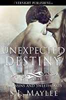 Unexpected Destiny (Assassins and Sweethearts, #3)