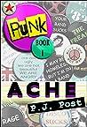 Ache (Punk, #1)