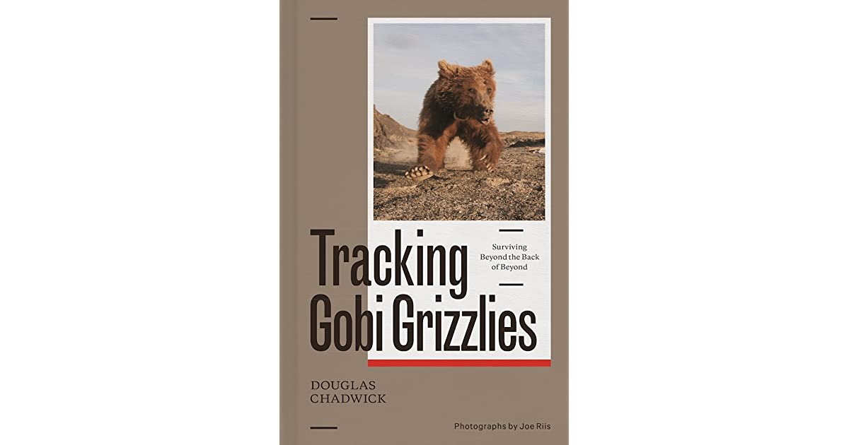 Gobi Grizzlies Tracking A Myth To Save A Desert By Douglas H Chadwick