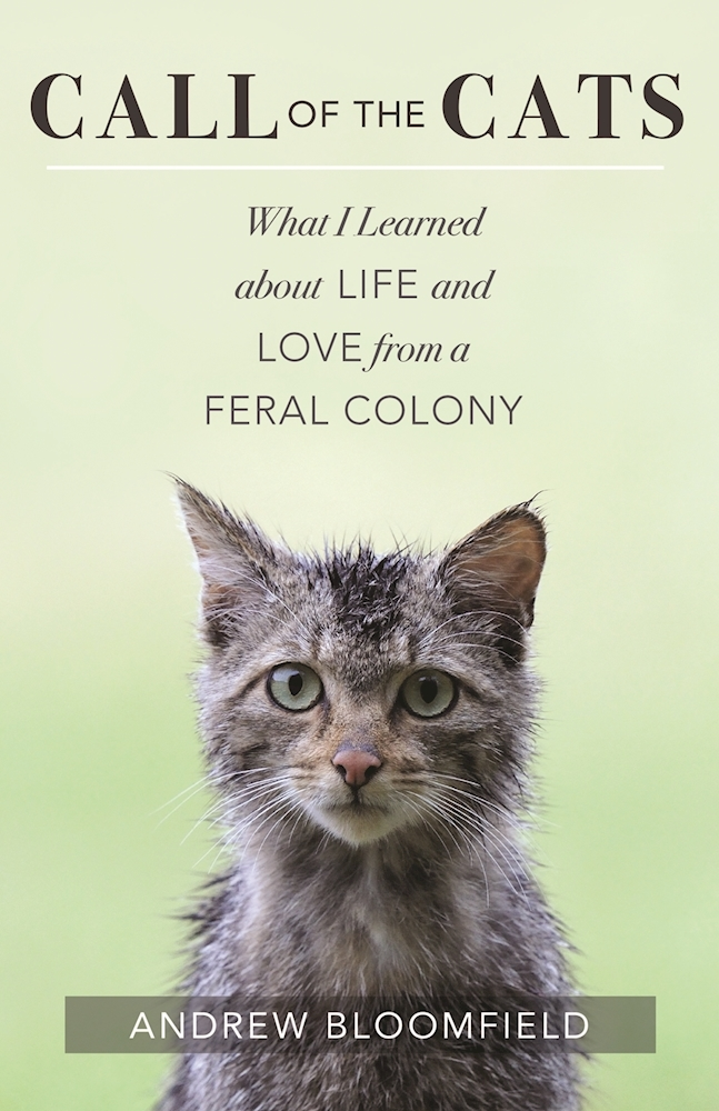 Call of the Cats: What I Learned about Life and Love from a Feral Colony