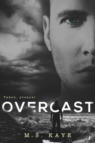 Overcast by M.S. Kaye