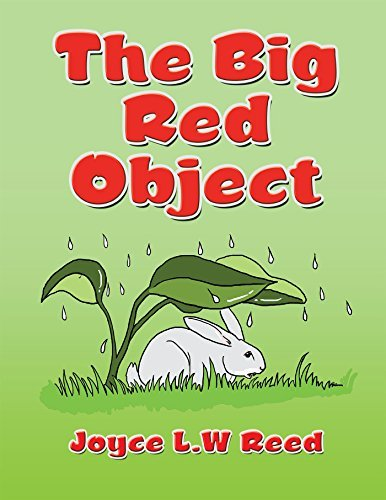 The Big Red Object  by  Joyce L W Reed