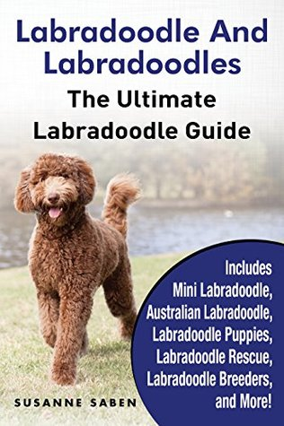 Labradoodle And Labradoodles The