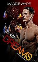 Stolen Dreams (Fortis Security Series)