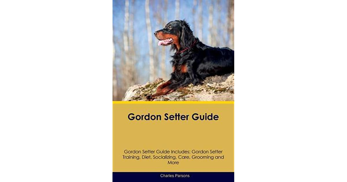 Gordon Setter Guide by Charles Parsons