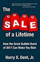 The Sale of a Lifetime: How the Great Bubble Burst of 2017 Can Make You Rich
