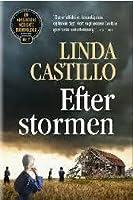 Efter stormen (Kate Burkholder #7)